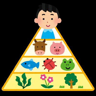 ヒトは食物連鎖の最上位に居る