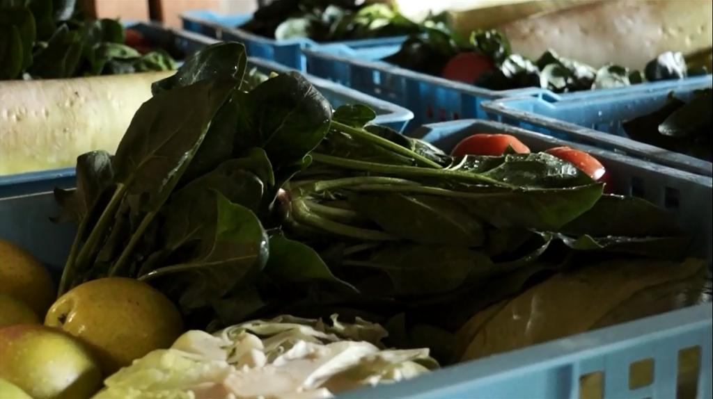 仕込み前の原料の野菜