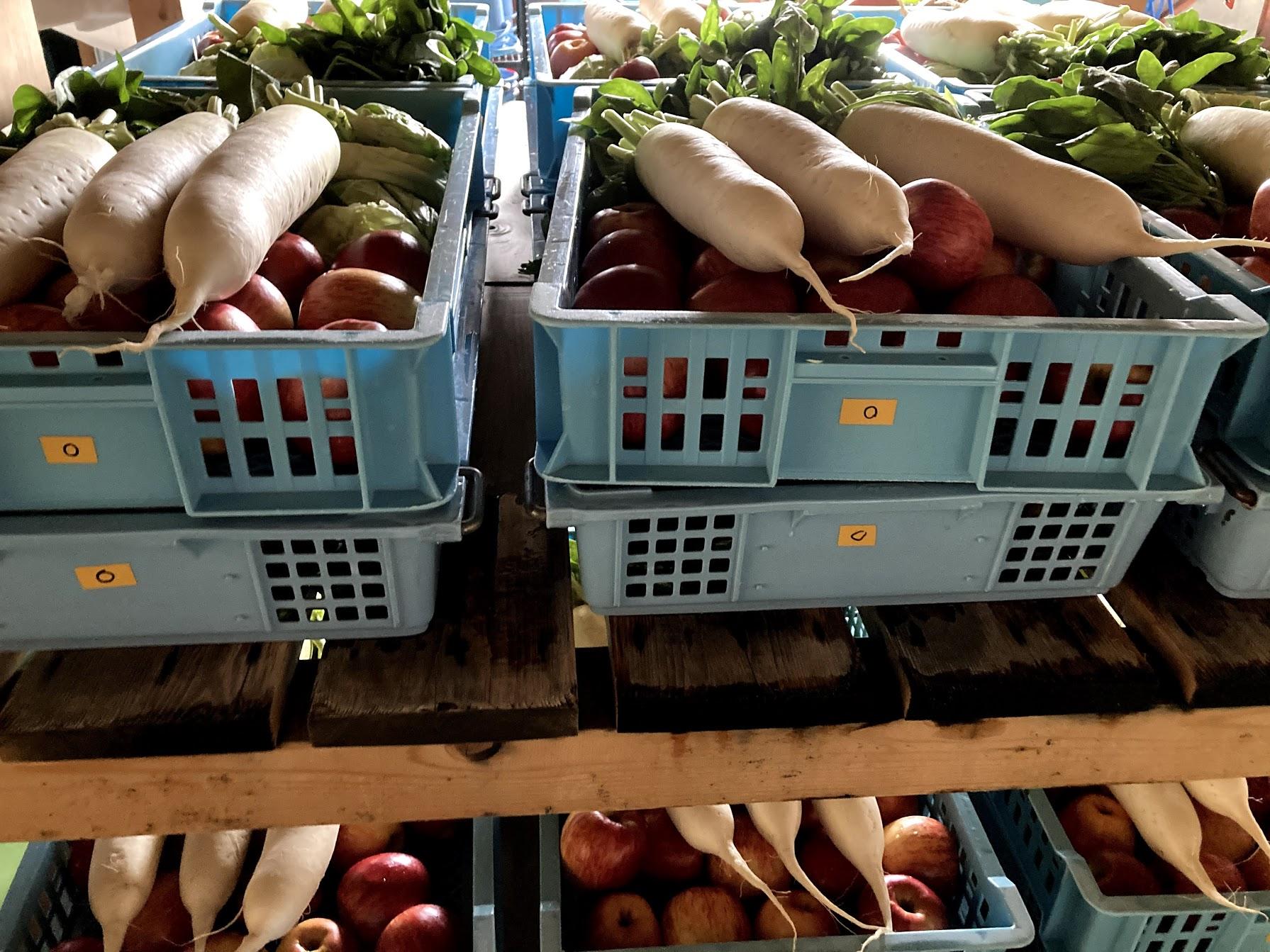 酵素の原料となる野菜や果物。これらのフレッシュな現慮のエキスだけ発酵させる(水は使わない)のがウチの酵素の特徴のひとつ